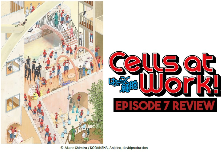 A Cell On Death Row – 'Cells At Work!' Episode 7 Review