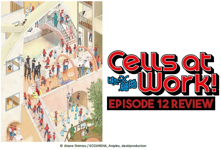 All Cell Breaks Loose – 'Cells At Work!' Episode 12 Review